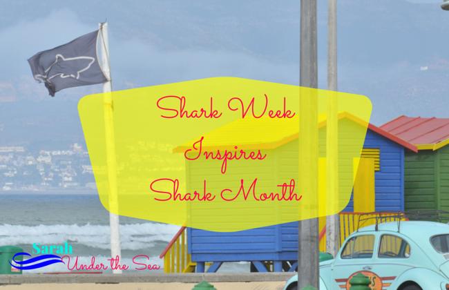 Shark Week Inspires Shark Month